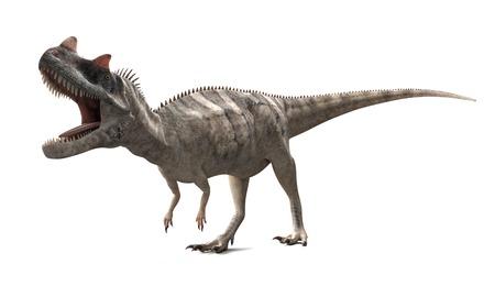 Ceratosaurus dinosaur,artwork LANG_EVOIMAGES