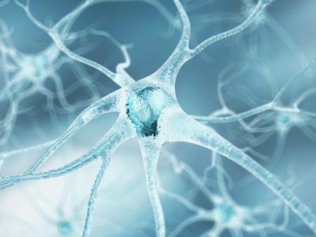 Nerve cell,artwork LANG_EVOIMAGES