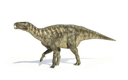 Artwork of an iguanodon dinosaur against a white background