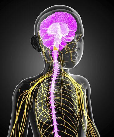 cns: Childs central nervous system, artwork