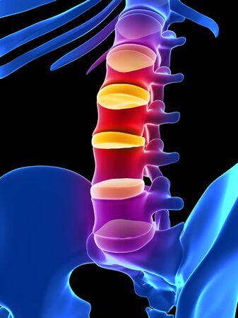 Lidské spinální disky, ilustrace LANG_EVOIMAGES