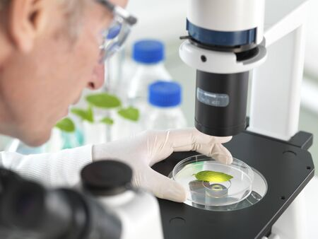 Plant Biotechnology LANG_EVOIMAGES