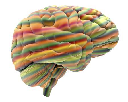 cns: Brain, artwork LANG_EVOIMAGES