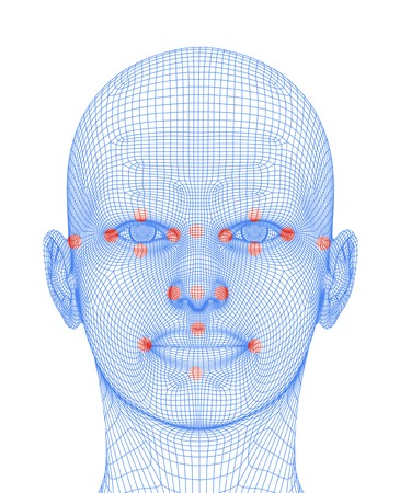 Biometric facial map LANG_EVOIMAGES