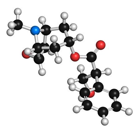 corkwood: Scopolamine anticholinergic drug molecule