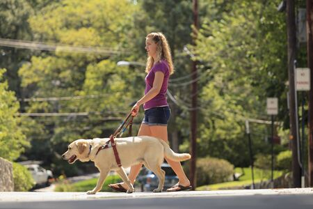 impaired: Visually impaired student with her dog