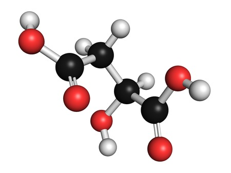 Malic acid fruit acid molecule LANG_EVOIMAGES