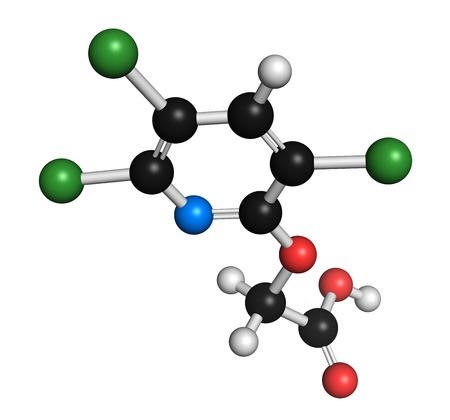 Triclopyr herbicide molecule