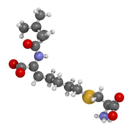 Cilastatin molecule