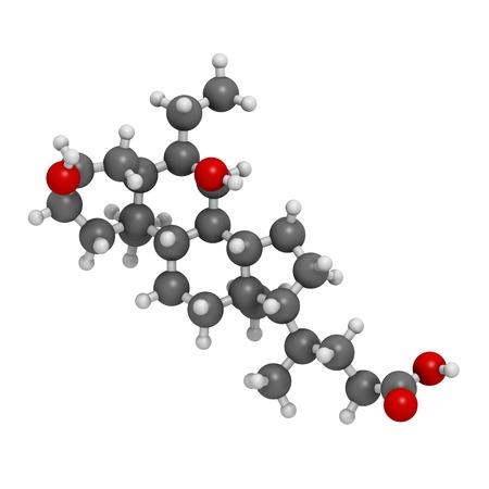 Obeticholic acid liver disease drug