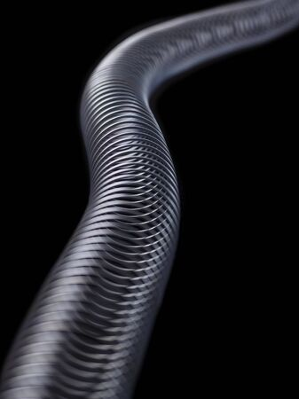the transverse: Transverse wave in a slinky spring