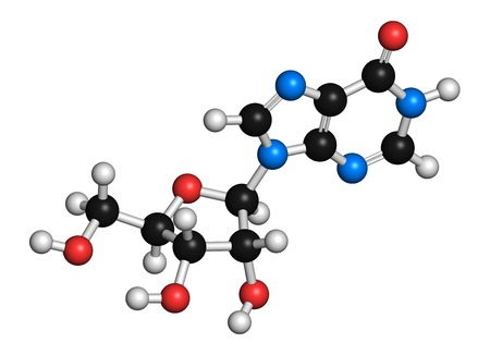 nucleoside: Inosine nucleoside molecule LANG_EVOIMAGES