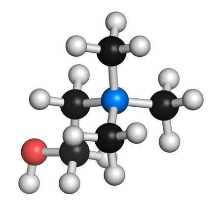 Choline essential nutrient molecule