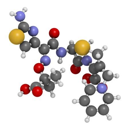 Ceftazidime cephalosporin antibiotic drug