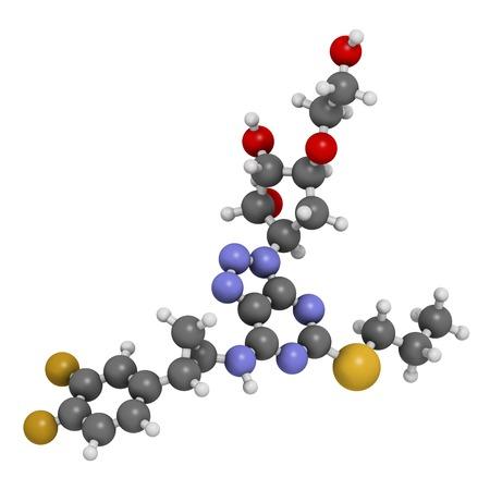 platelet: Ticagrelor platelet inhibitor drug