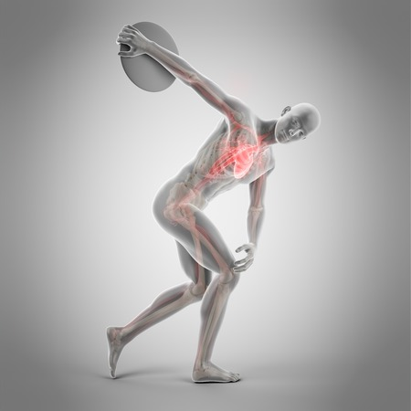 lanzamiento de disco: Anatomy of athlete throwing discus, illustration