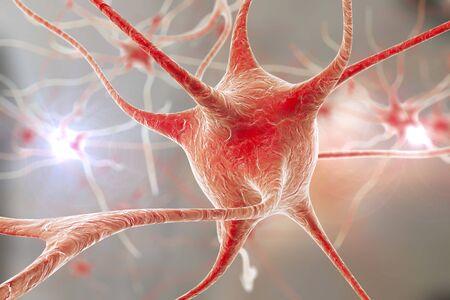 cns: Nerve cells, illustration