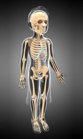 skeletal system: Skeletal system of a child, illustration