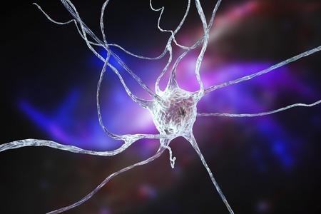 cns: Nerve cell, illustration