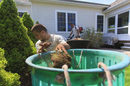 paysagiste: Paysagistes au travail dans le jardin LANG_EVOIMAGES