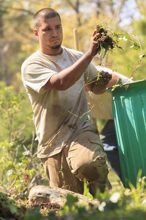 arrodillarse: Paisajistas en el trabajo en el jardín