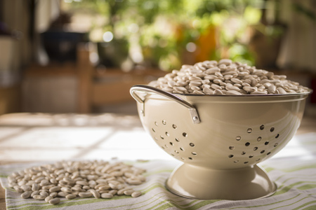 food: Tarbais beans in a colander