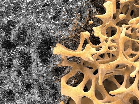 Bone structure and nanomaterial, artwork