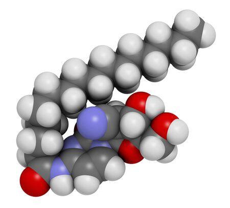 leucemia: Molécula de fármaco para cáncer de sapacitabina (análogo de nucleósido). Representación 3D. Los átomos se representan como esferas con una codificación de color convencional: hidrógeno (blanco), carbono (gris), nitrógeno (azul), oxígeno (rojo)