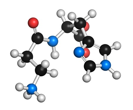 Carnosine (L-carnosine) food supplement molecule. 3D rendering. Atoms are represented as spheres with conventional colour coding: hydrogen (white),carbon (black),oxygen (red),nitrogen (blue)