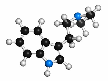Dimethyltryptamine (DMT) psychedelic drug molecule. Present in the drink ayahuasca. Atoms are represented as spheres with conventional colour coding: hydrogen (white),carbon (grey),nitrogen (blue) LANG_EVOIMAGES