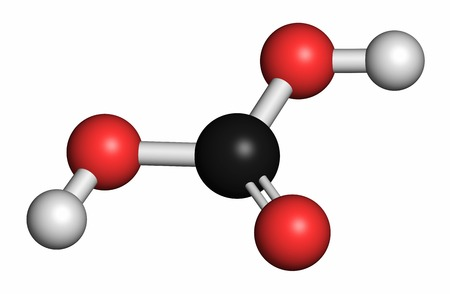 bicarbonate: Carbonic acid molecule. Formed when carbon dioxide is dissolved in water (carbonated water). Atoms are represented as spheres with conventional colour coding: hydrogen (white),carbon (grey),oxygen (red) LANG_EVOIMAGES