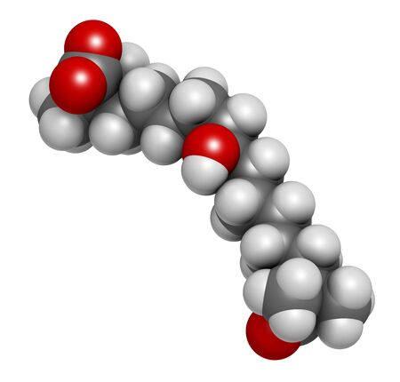 Bempedoic acid hypercholesterolemia drug molecule (ATP-citrate lyase inhibitor). 3D rendering. Atoms are represented as spheres with conventional colour coding: hydrogen (white),carbon (grey),oxygen (red)