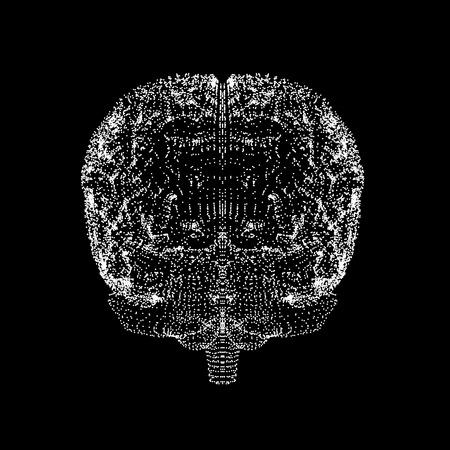 Human brain,conceptual artwork