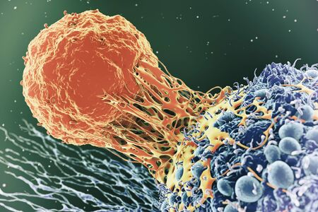 Cancer cell and T cell,illustration