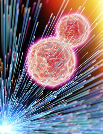 Cancer cells exposed to radiotherapy, illustration LANG_EVOIMAGES