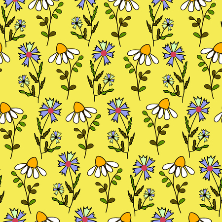 camomiles: Seamless texture with flowers. Vector. Camomiles and cornflowers.