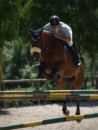 rider and his horse over the hurdle in equestrian competition