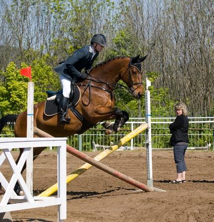 mujer en caballo: Avantr�n en el obst�culo antes de saltos h�picos Foto de archivo
