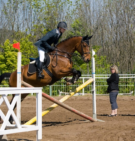 assistent: Limber up on the hurdle before showjumping