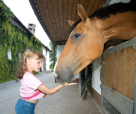 Little girl giving food to the horse photo