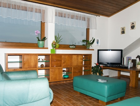 Part of living room with television
