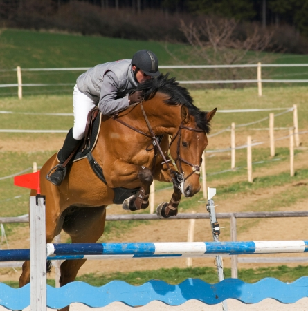 Rider on brown horse on showjumping competition
