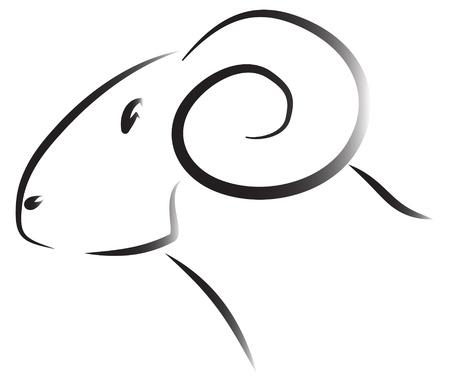 carnero: Dibujado cabeza de carnero oveja Vectores