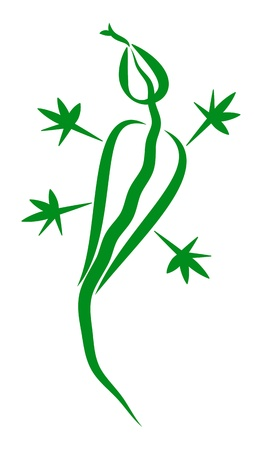 lizzard: Drawn stylized lizzard in green Illustration