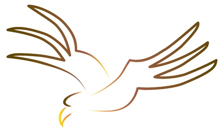 Stylized sketch of flying eagle Stock Vector - 17885459
