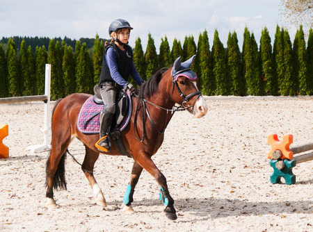 pony girl: Girl riding on sport pony