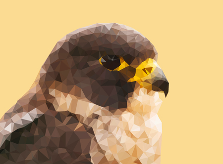 falco peregrinus: Head of peregrine falcon - Falco peregrinus  fastest animal in the world made from triangles