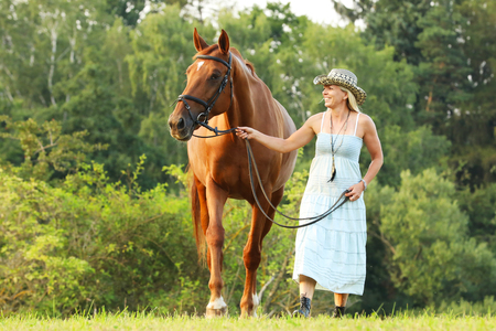 Woman lead her horse to parsure on summer afternoon