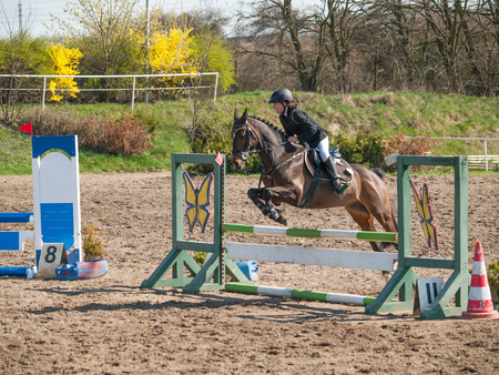 A girl caucasian horse rider riding and jumping a hurdle with her beautiful brown sport pony Standard-Bild