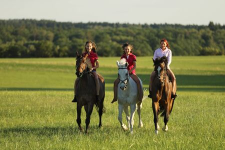 Young girls riding on horses without saddle on meadow in summer afternoon, be free
